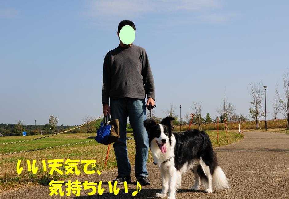 c0147241_227525.jpg