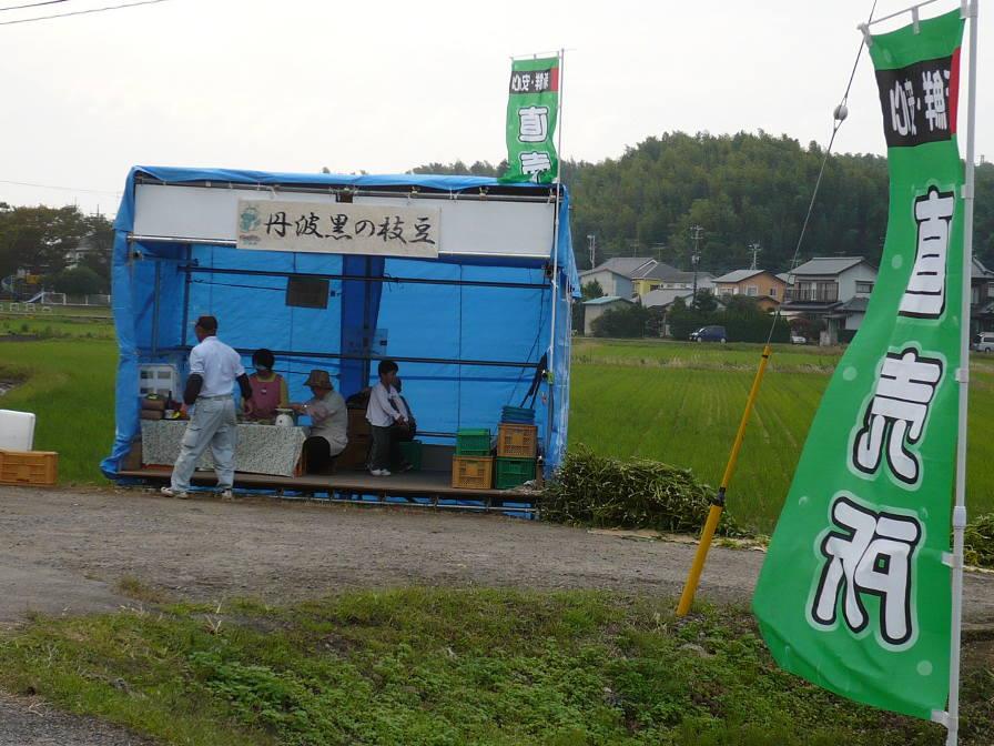 千葉県印旛郡栄町の丹波の黒豆『どらまめ』_f0193752_116743.jpg