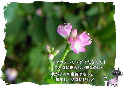 f0137096_21552541.jpg