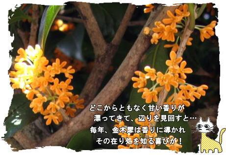 f0137096_2155322.jpg