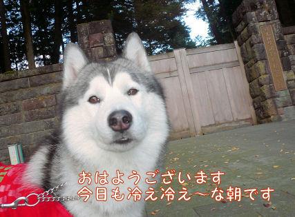f0112407_18303333.jpg