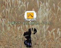 f0048418_15454647.jpg