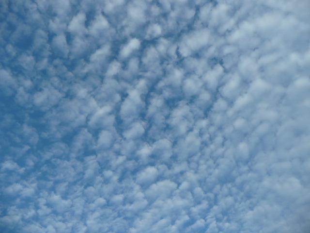 秋の空♪_f0099147_19333728.jpg