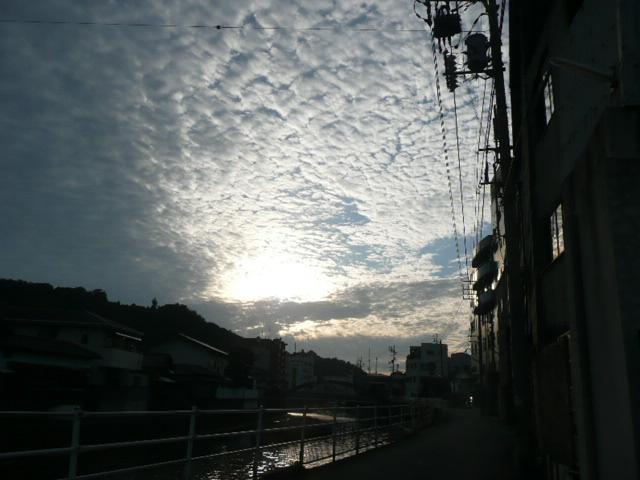 秋の空♪_f0099147_19341748.jpg