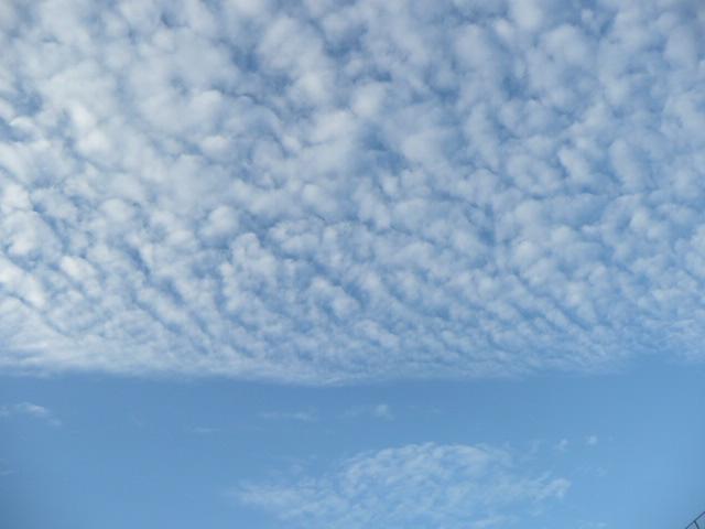 秋の空♪_f0099147_19344436.jpg