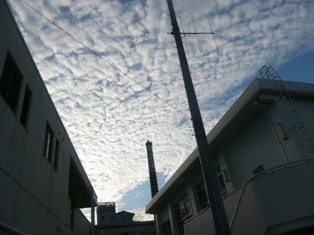 秋の空♪_f0099147_1934591.jpg