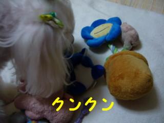 f0145192_15401866.jpg