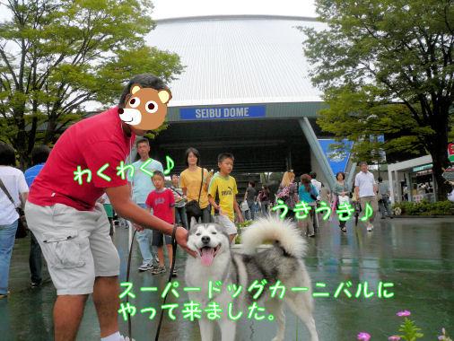 f0112407_1257934.jpg