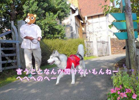 f0112407_2203237.jpg
