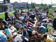 秋の「芋ほり大会」開催_b0062527_14562984.jpg