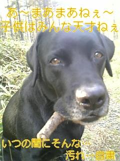 f0148927_19105055.jpg
