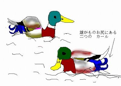 c0123031_2050525.jpg