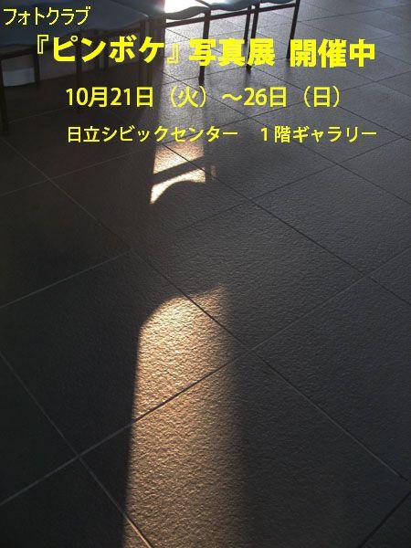 f0089349_2111571.jpg