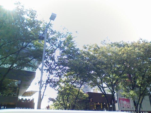 散歩_c0175551_12482749.jpg