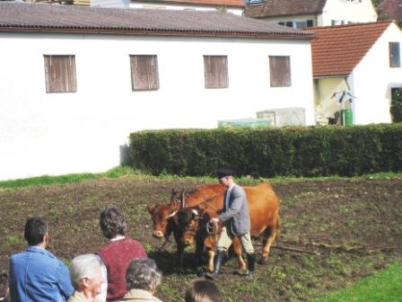 Drescherfest という名の小さな村の秋祭り_f0116158_5451993.jpg