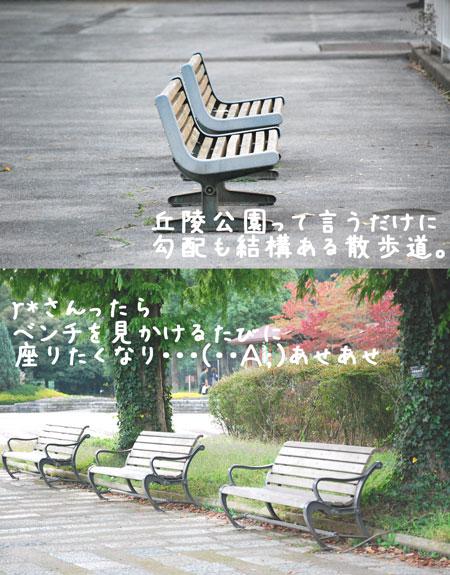 c0081276_1142525.jpg