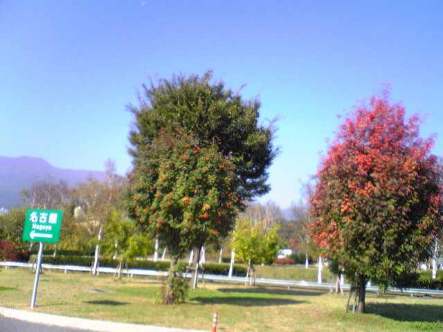 秋色の風☆_e0142585_10161884.jpg