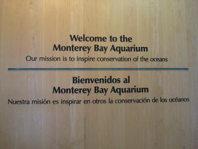 モントレー水族館へ_c0119197_13275414.jpg
