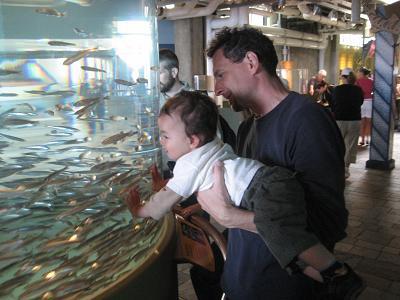 モントレー水族館へ_c0119197_13324249.jpg