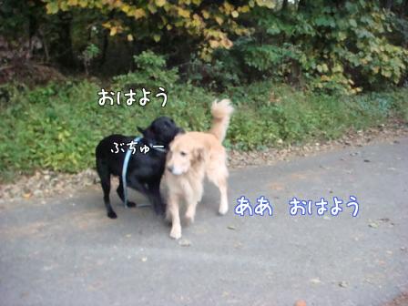 好き好き好き_f0064906_1884238.jpg