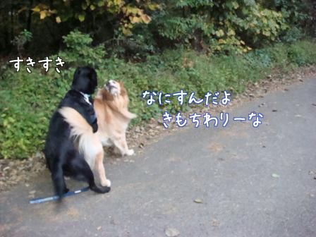 好き好き好き_f0064906_1885748.jpg
