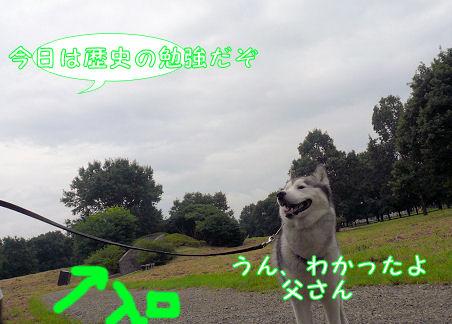 f0112407_10525347.jpg
