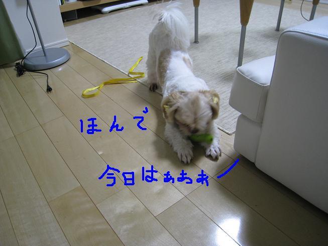 f0195809_2248077.jpg