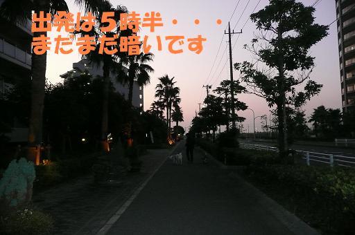 f0121712_5463682.jpg
