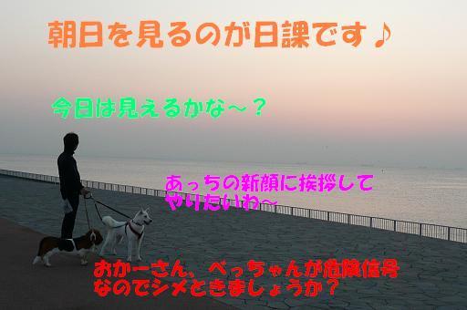 f0121712_5474917.jpg