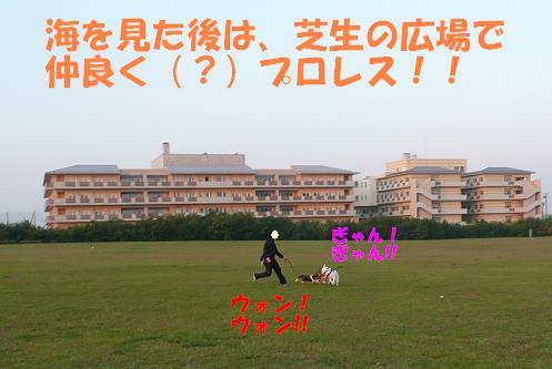 f0121712_553529.jpg