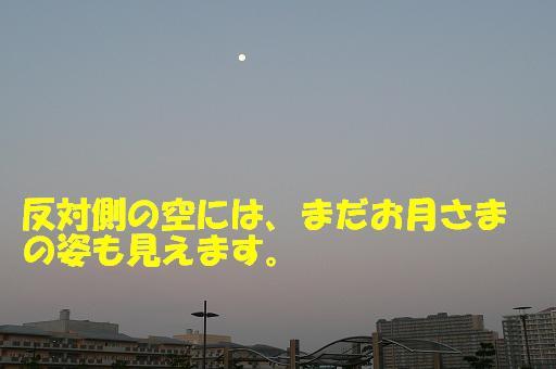 f0121712_553639.jpg