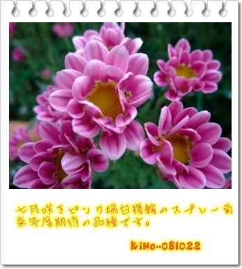c0165346_11364389.jpg