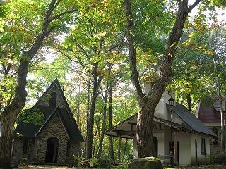 森の散歩_b0147051_11493343.jpg