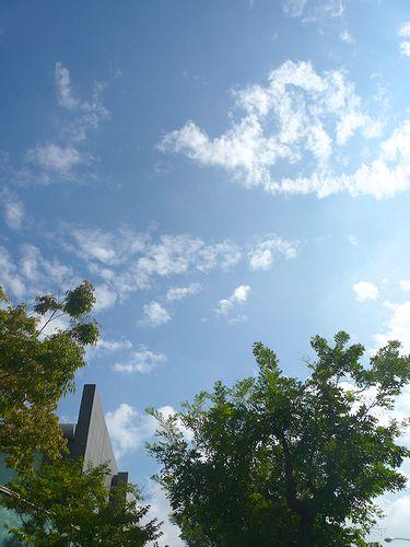 ようこそ、秋の代官山へ。。。メゾン ポールボキューズ&イータリー代官山 EATALY Daikanyama* :☆.。†_a0053662_10322868.jpg