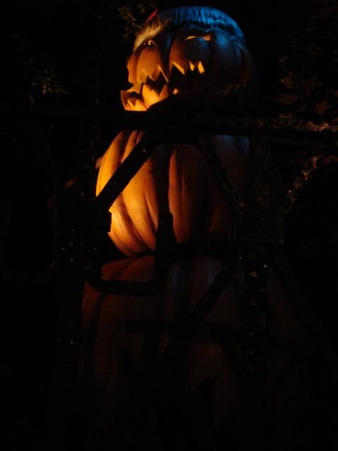 TDL Halloween Attack!!_f0011179_19261765.jpg