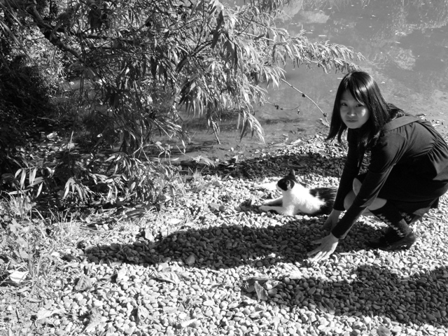日本庭園2_f0194788_4565299.jpg