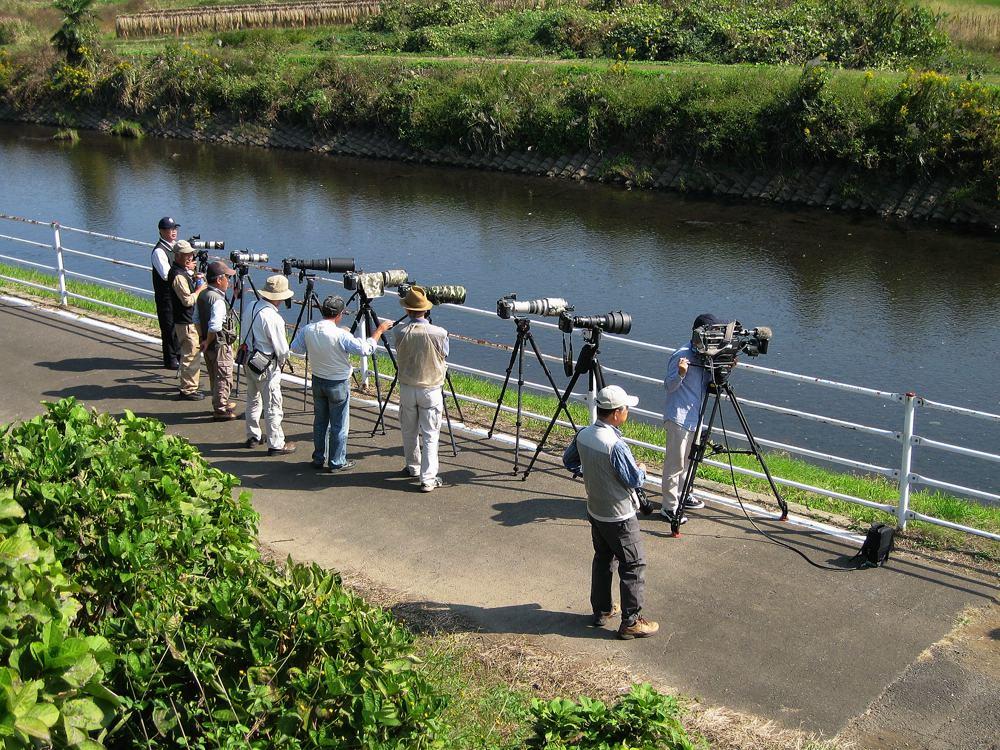 巨大魚をGET/NHKの取材_b0024798_4163060.jpg