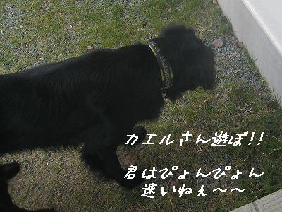 f0176499_18364172.jpg