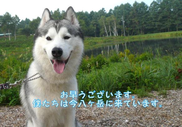 f0112407_09624.jpg