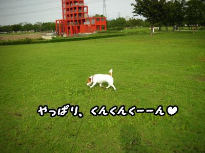 f0129214_2251425.jpg