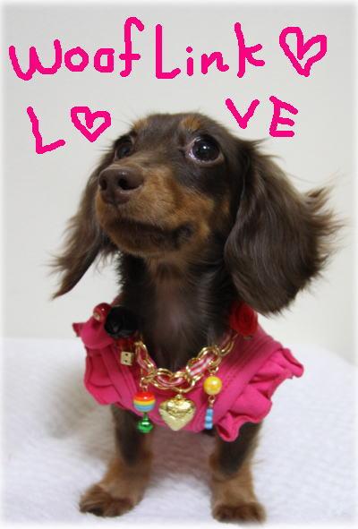 LOVE WOOFLINK!! _b0084929_1594432.jpg