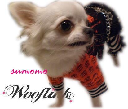 LOVE WOOFLINK!! _b0084929_255015.jpg
