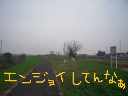 f0176830_17311156.jpg