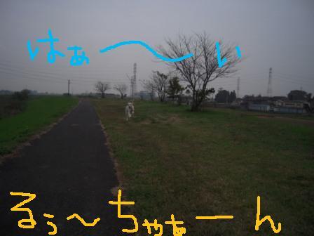 f0176830_17333620.jpg