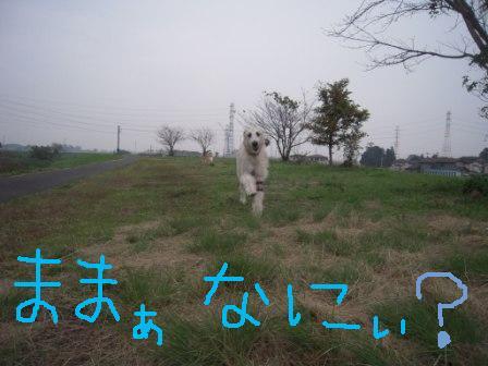 f0176830_17341368.jpg