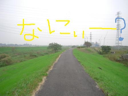 f0176830_17361555.jpg