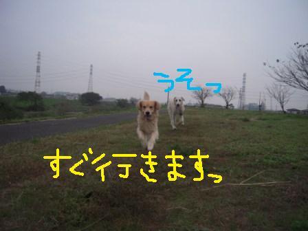 f0176830_17365438.jpg