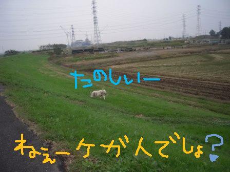 f0176830_17384680.jpg