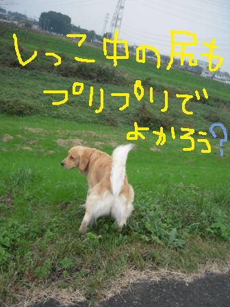 f0176830_17512147.jpg