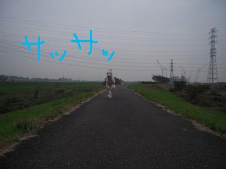 f0176830_18073.jpg